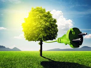 Ökostrom (grüner Strom)